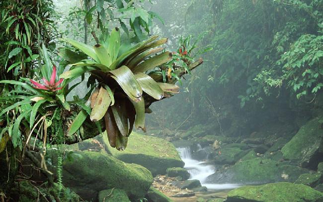 最原始的_一定要去 美加最令人叹为观止的自然奇观 我们帮你选出了最