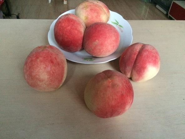八月的应季水果有哪些 别错过鲜果期短的无花果