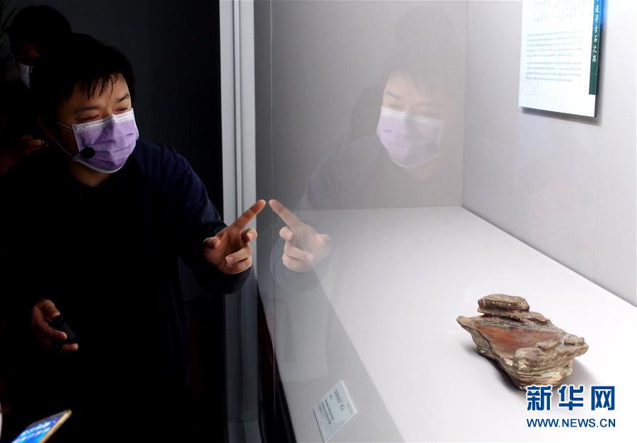 (新華視界)(3)上海博物館將舉辦恢復開放後首個特展