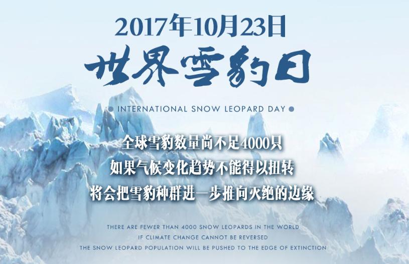 10月23日——世界雪豹日