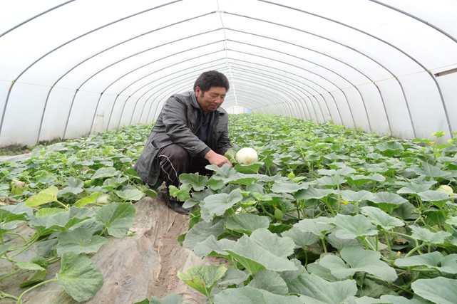 新华网:未来,拾村村会是什么样子?