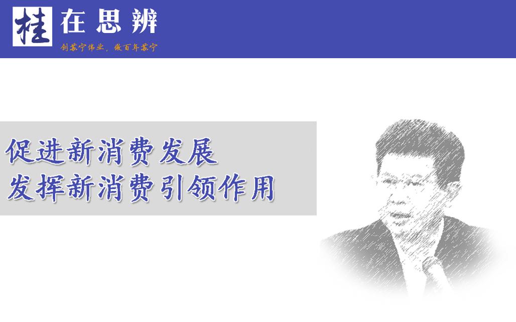 张桂平:促进新消费发展,发挥新消费引领作用