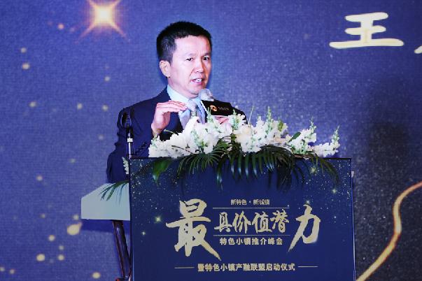 王广斌:多学科联合 创新实践特色小镇建设