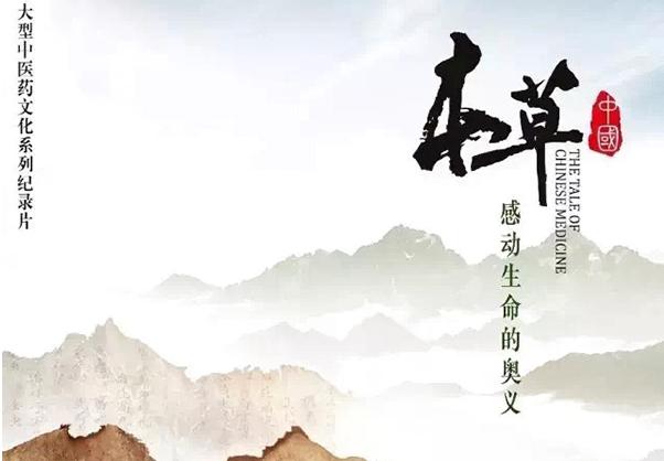 上海电视节|让纪录片有更多受众 就不能墨守成规