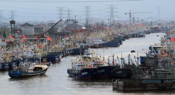 台州:渔船回港避风