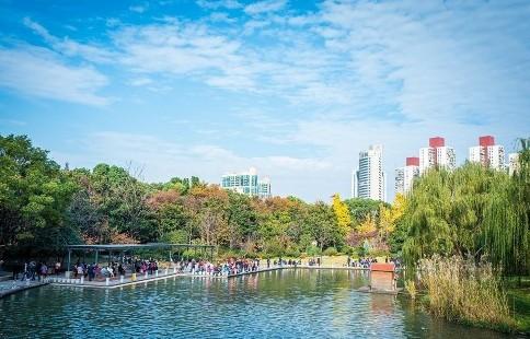 探寻徐家汇源景区最适合度过夏日时光的7个地方
