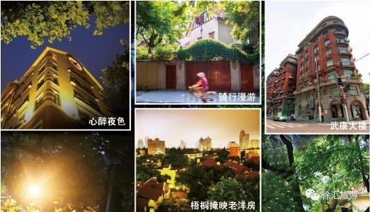 一个人一整天一辆自行车 你可以这样游上海