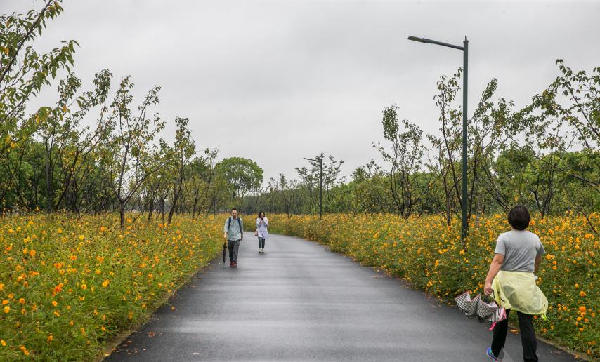 雨中迎来试开园 走进嘉北郊野公园