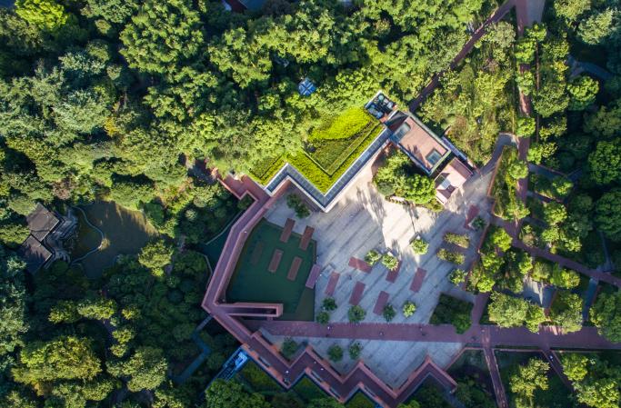 """航拍上海 那些""""藏""""在城市中的绿林"""