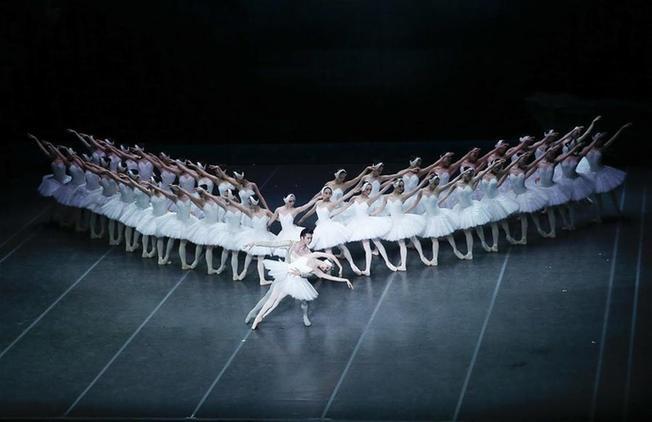 上海芭蕾舞团豪华版《天鹅湖》在比利时上演