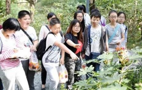 领略上海野趣之美 2017年生物限时寻开启