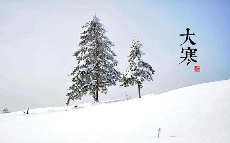 大寒|又一波冷空气在路上 申城下周要下雪?