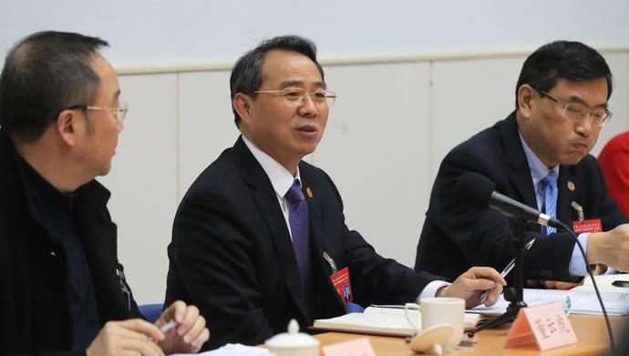 董云虎参加政协分组讨论