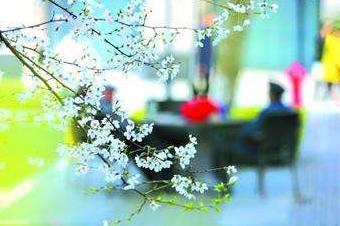 """申城周五起明显降温 15℃是""""春捂""""临界温度"""