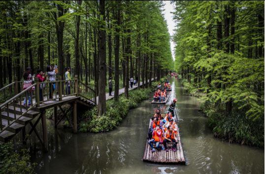 """跟随诗歌去旅行—第二届""""水上森林·春江诗会""""在江苏兴化举办"""