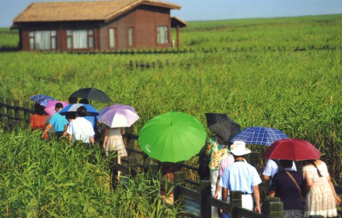 【一起重温那些年的上海旅游节】良辰美景篇