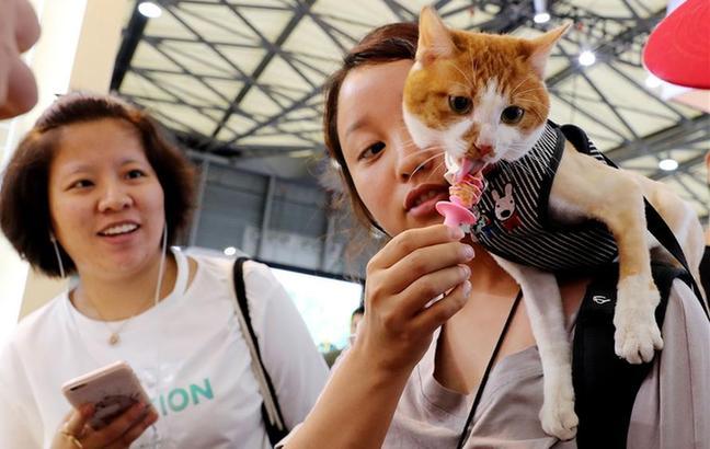 亚洲宠物展在沪举行