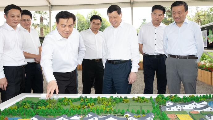应勇:郊区是实施乡村振兴战略的主战场