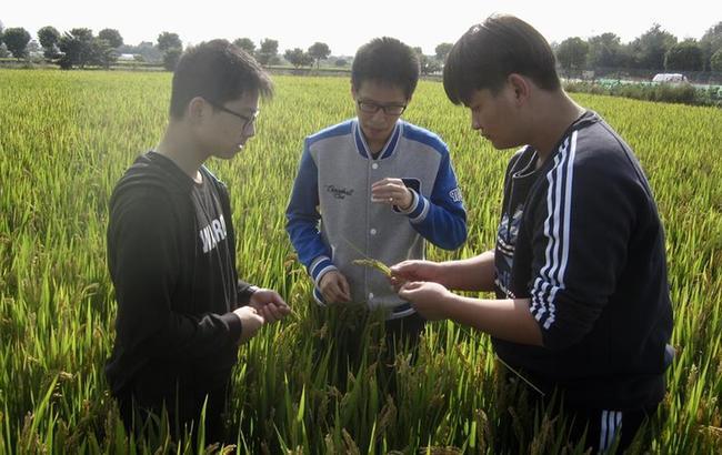 """上海崇明中学:""""自主教诲""""造就一代代逐梦人"""