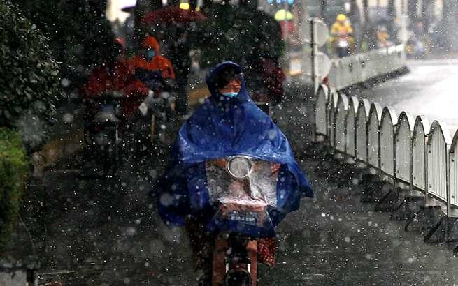 初雪轻拂上海,雪羽飘舞,美翻了!
