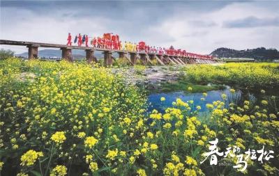 上海出品《春天的马拉松》呈现乡村振兴画卷