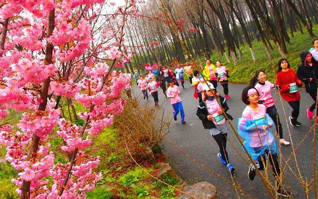 全民健身——上海举行樱花节女子10公里精英赛