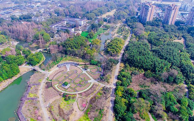 """【飞""""阅""""中国】鸟瞰上海植物园""""春""""色"""