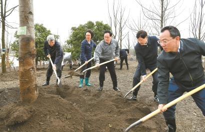 上海今年将新增绿地1200公顷!李强等市领导在浦东义务植树