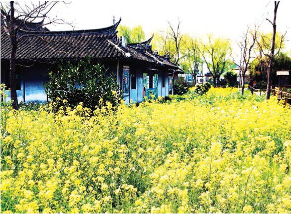 看大戏游上海文化旅游手册(各区活动)