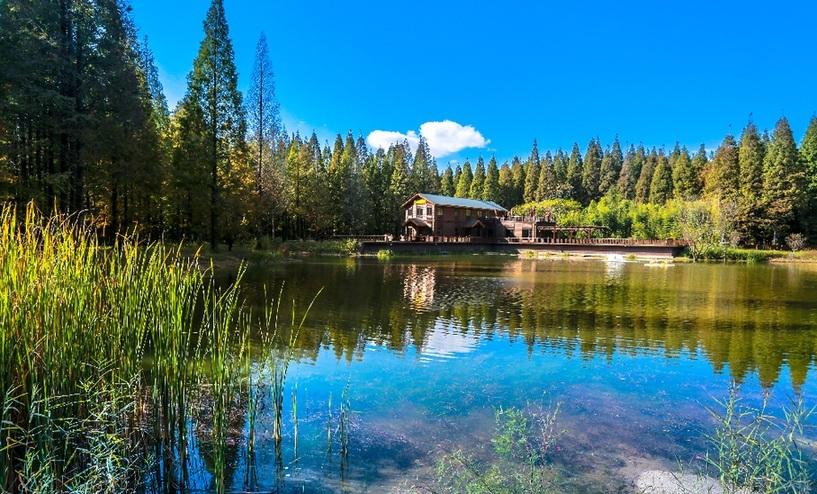 来自东台的旅游邀请一:绿色生态大公园让游客深呼吸