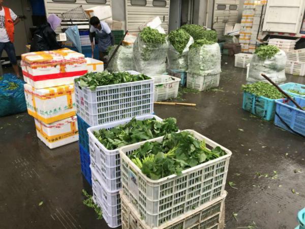 保障申城菜篮子供应 上海蔬菜集团加大货源储备