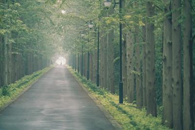 崇明将迎来中欧24小时挑战赛 四千人明珠湖跑步接力