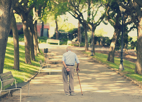 关于老年认知症 你想了解的都在这!