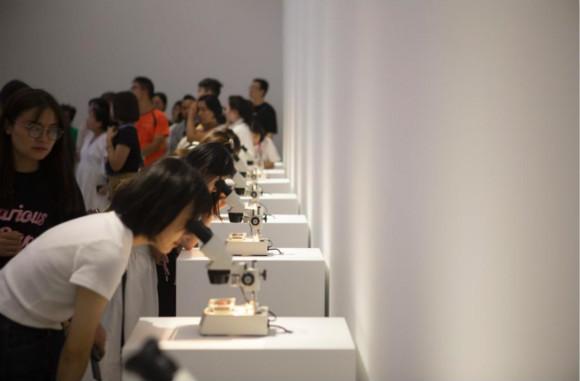 上海当代艺术博物馆首次公开七年来收藏作品