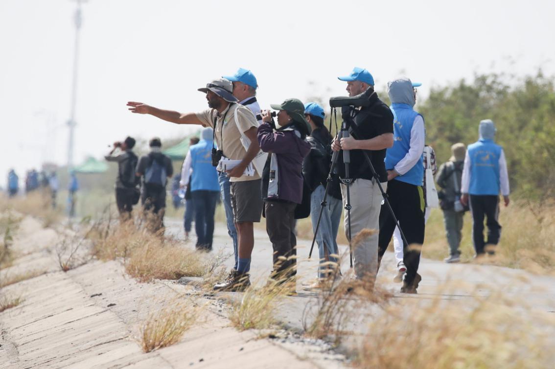 近百名各国选手在东台条子泥湿地参加国际观鸟赛