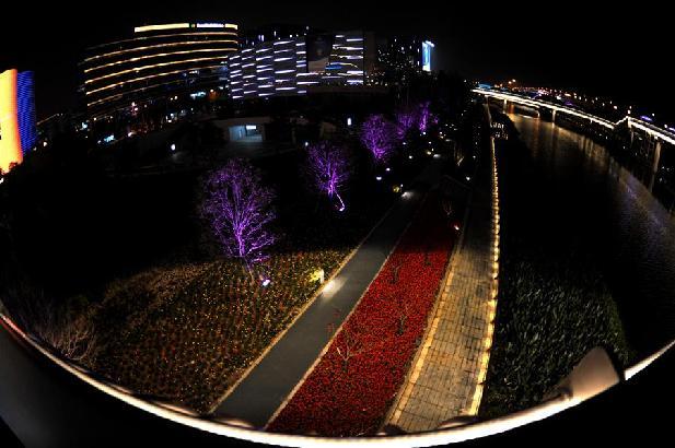 上海:流光溢彩迎接第二屆進博會