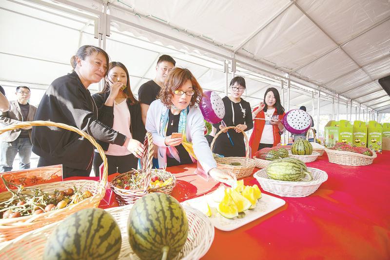 """沪北金东台,自然好味来!这个上海的""""菜篮子""""不一般"""