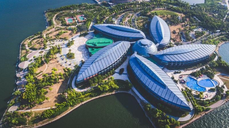 新片区明年将推进130余个项目 总投资超4000亿元