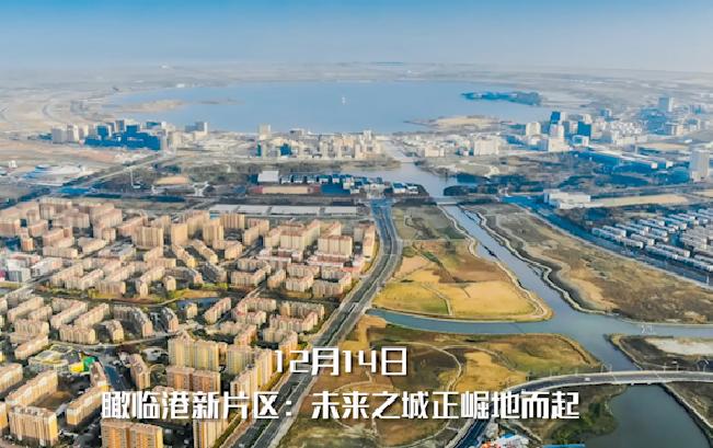 【新华社记者看上海】致敬镜头里的2019,迈向更高质量的2020