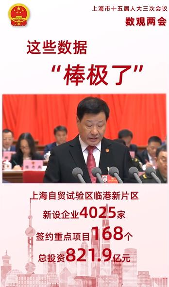 """【数读上海两会⑤】这些数据""""棒极了"""""""
