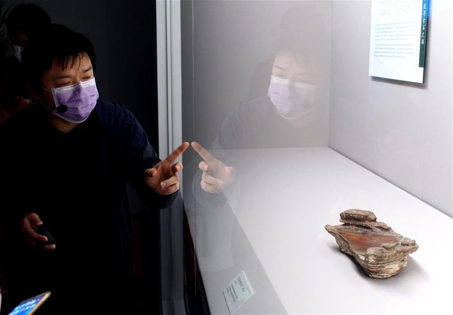 上海博物館將舉辦恢復開放後首個特展