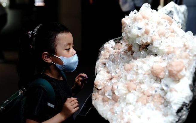 第21届上海矿物化石展开幕