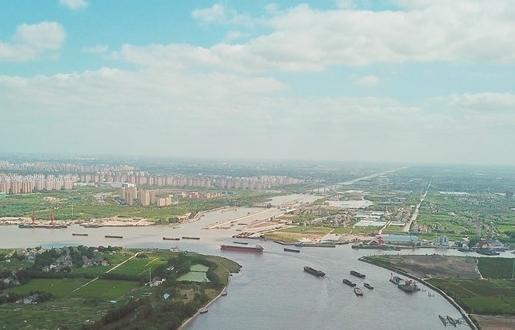 800多条市民金点子 共同畅想五年后上海什么样