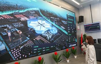 """上海:机器人助力""""进博会""""供电安全"""