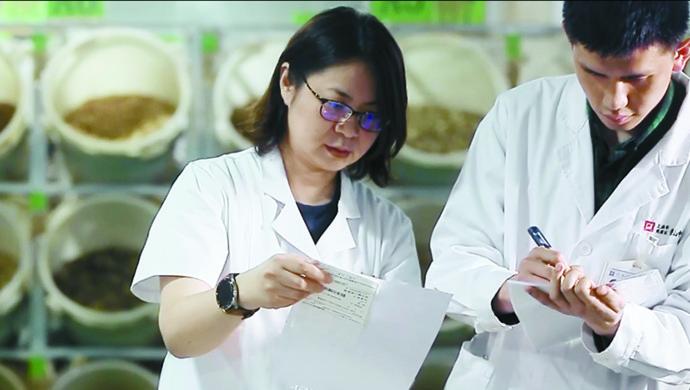 聚焦儿童防疫,中华中医药学会儿科专家研讨新冠防治策略