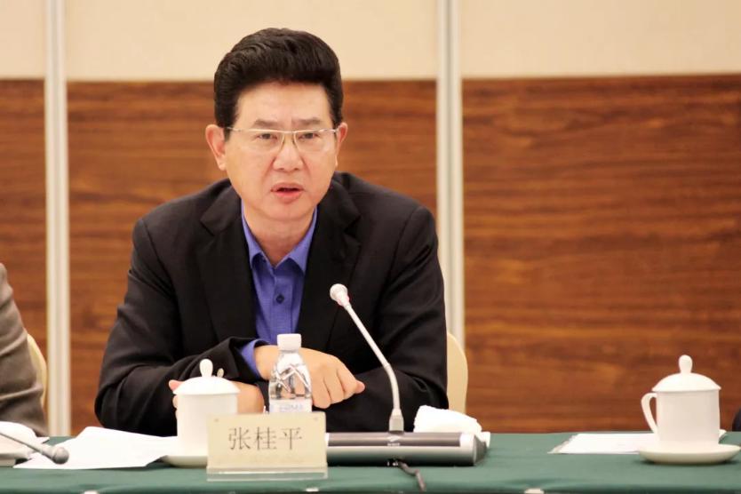 苏宁环球董事长张桂平参加民革十三届中央经济委员会第二次全体会议