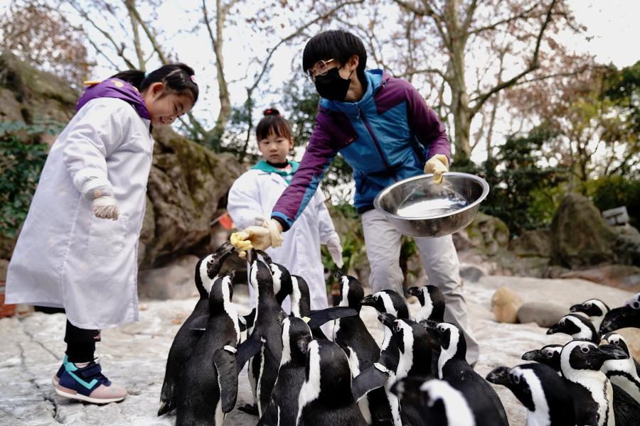 """上海动物园的""""超萌小兽医"""""""