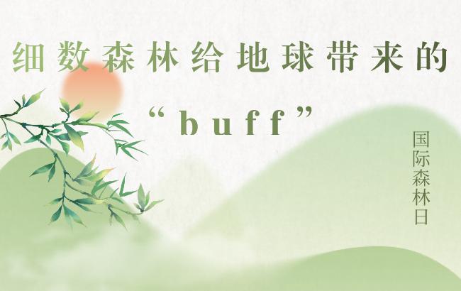 """国际森林日丨细数森林给地球带来的""""buff"""""""
