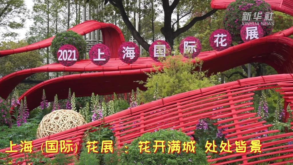 上海(国际)花展 :花开满城 处处皆景