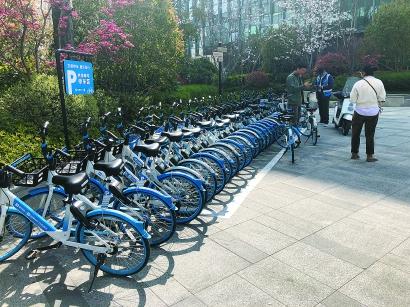 时隔两年,虹桥商务区共享单车回归